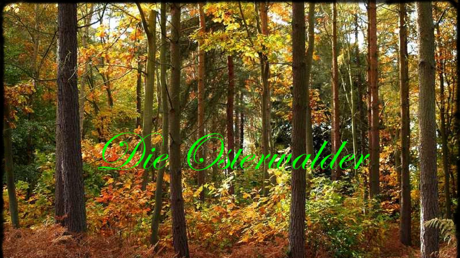 Die Osterwalder